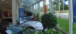 Filmcote Window Film at Car Dealership